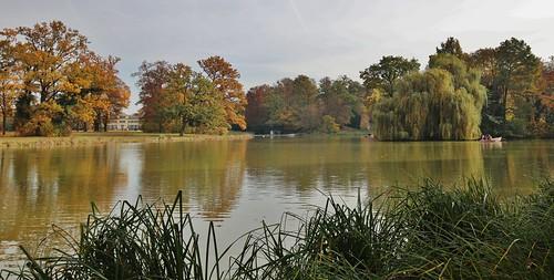 Herbst im Park Schönbusch