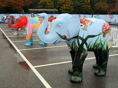 Bugsy by Liz Hall, Herd of Sheffield Farewell Weekend 2016 (Dave_Johnson) Tags: andrepeat neilcarribine meadowhall carpark shoppingcentre bugsy lizhall herdofsheffield herd elephant elephants art streetart sculpture sheffchildrens sheffieldchildrenshospitalcharity sheffieldchildrenshospital childrenshospitalcharity childrenshospital sheffield southyorkshire