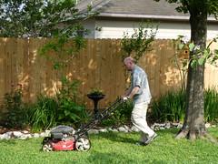 david mowing lawn (treenquick) Tags: lawn mower grass