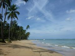 La Playa (little_duckie) Tags: lasterrenas republicadominicana dominicanrepublic saltoellimon ellimon cascada waterfall beach laplaya playa laplayalasballenas