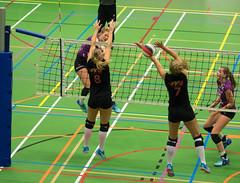 1B260771 (roel.ubels) Tags: vv utrecht eurosped galgewaard volleybal volleyball 18 finale nationale beker