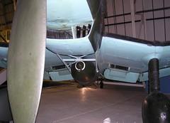"Junkers Ju-87G-2 Stuka 11 • <a style=""font-size:0.8em;"" href=""http://www.flickr.com/photos/81723459@N04/30461209483/"" target=""_blank"">View on Flickr</a>"