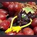 black grapes please