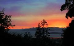 Sunset, 11-11-16 (TJ Gehling) Tags: sunset 111116 november112016 sanfranciscobay goldengatebridge brooksisland dorothyrosenbergmemorialpark drmp elcerrito