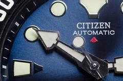 Citizen Automtic (SLX_Image) Tags: blue citizen diver macro macromondays other photography promastersea watch 7dwf