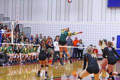 IMG_6894 (SJH Foto) Tags: girls volleyball high school allentown central catholic somerset team teen teenager net battle spike block action shot jump midair burst mode