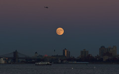 Supermoon taken from Liberty State Park (YM_T) Tags: moon moonrise supermoon newyorkcity manhattan brooklynbridge brooklyn libertystatepark newjersey 月亮 月 圆月 helicopter ferry