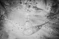 The careless waiter (Anthony Plancherel) Tags: art dropssplashes experimental drops splashes water glass wineglass whitebackground mushroom splash pouring blackandwhite whiteandblack bw monochrome texture surreal