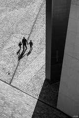 Destins lis (Julien Rode) Tags: architecture city contraste enfants lavillette lumire nb ombres paris pavs portfolio pre rue silhouette street ville lumire pavs pre