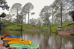 Bhulla Lake, Lansdowne, Uttarakhand (Anubhav Kochhar) Tags: canoneos60d canon canonefs soloindiantraveller wow beautifulplace beautiful amazing amazingfeeling awesome lansdowne bhulla taal lake water manmade picoftheday photooftheday nature naturalbeauty paradise solotravel anubhavkochhar airingbyway morningmist boat boating vibrant greenery dramatic lushgreen park uttarakhand pauri garhwal
