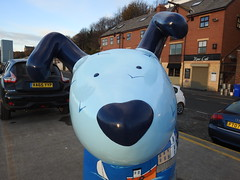 DSCN6287 (stamford0001) Tags: great north snow dogs shields fish quay snowdogs st oswalds hospice