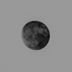 Opposite (jwayne810) Tags: supermoon inverted evening southernillinois fall nov16