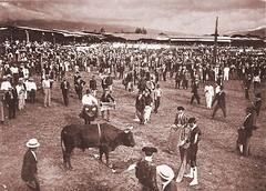 #Bullfighting, San Jos, Costa Rica, 1900's [1370x980] #history #retro #vintage #dh #HistoryPorn http://ift.tt/2fe7PT3 (Histolines) Tags: histolines history timeline retro vinatage bullfighting san jos costa rica 1900s 1370x980 vintage dh historyporn httpifttt2fe7pt3