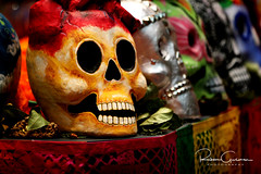Day of the Dead 2016 19 (part 1) (Ruben Gusman Photography) Tags: thenelsonatkinsmuseumofart mariachis diadelosmuertos dayofthedeadskulls skeletons death donquioto kansascity