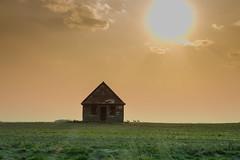 We Three Against The World (gerrypocha) Tags: deer school sunset prairie color saskatchewan