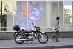 W800 y macba (michele franzese) Tags: w800 kawasaki moto motocicleta bike motorcycle barcelona macba panasonic lumix lumixg gx8 ride streetphoto