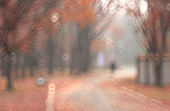 Working in the Park (lizartpic) Tags: autumn fall forest tree park nature naturallight tilting bokeh longexposure longshot circle smooth illusion noting outdoor people