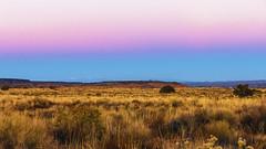 Twilight Prairie- Sandia, New Mexico (Flortography) Tags: new mexico newmexico abq albuquerque usa nationalpark desert prairie mountain landscape park nature colors vivid light colores lumix panasonic outdoors sky skyline horizon america dusk twilight sunset