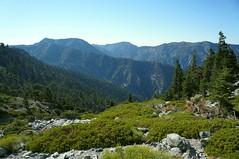DSC03685 (deerhake.11) Tags: hiking angelesnationalforest mtbaldy