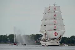SAIL-In Parade 2015 'Sagres III' (l-vandervegt) Tags: holland netherlands amsterdam boot boat nikon ship nederland parade sail tallship paysbas noordholland niederlande sagres schip 2015 velsen d3200