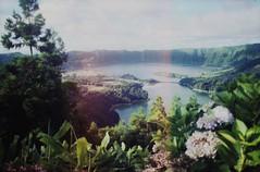 sete cidades, azores, portugal (Džesika Devic) Tags: travel summer lake film portugal rock analog volcano kodak slidefilm chrome elite expired volcanic hydrangeas tapestry setecidades fineartprint а society6