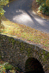 The Shadows (Chancy Rendezvous) Tags: thebridge bridge drain fall stone stream autumn morning shadows sanity walk blurgasmcom blurgasm davelawler davidclawler nikon nikkor chancyrendezvous