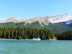 Maligne Lake, Jasper NP (2015-09-12) 025 (MistyTree Adventures) Tags: lake canada mountains nature water outdoors boat nationalpark jasper alberta kayaking jaspernationalpark malignelake cruiseboat