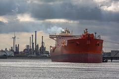 Eagle Bergen (Peet de Rouw) Tags: holland industry port ship oil petrol refinery tanker q8 europoort portofrotterdam petroleumhaven havenrotterdam denachtdienst havenfoto canon5dmarkiii peetderouw eaglebergen