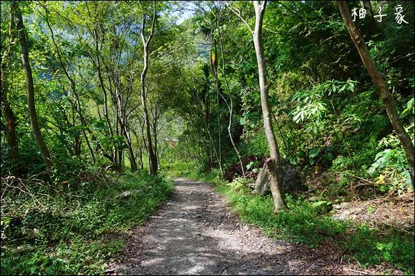小錐麓步道15
