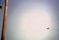 1966 Carswell AFB Airshow (Zane Adams.TX) Tags: texas force fort air 1966 airshow worth kodachrome slides usaf base f4 fortworth sr71 afb c141 f104 carswell b58 f111 northamerican johnwilliams xb70 b57 f101 carswellafb