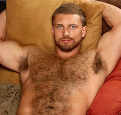 560 (rrttrrtt555) Tags: hairy armpit smile muscles hair beard bed bedroom eyes arms masculine chest lounge sheets pillow blond blanket stare dimples shoulders flex