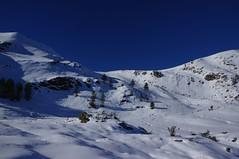 Balade au Courtal de Cougneit (Arige) (PierreG_09) Tags: pin rando neige sapin pyrnes pirineos balade arige lers leport couserans