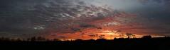 Himmels-Panorama über Urberach (fotoculus) Tags: sunset sky clouds germany deutschland sonnenuntergang hessen himmel wolken ciel alemania tyskland allemagne germania alemanha duitsland nwn rödermark rheinmaingebiet urberach