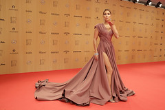 Bambi 2015 in Berlin (Hubert Burda Media) Tags: berlin germany bambi deu hubertburdamedia 12112015 2015