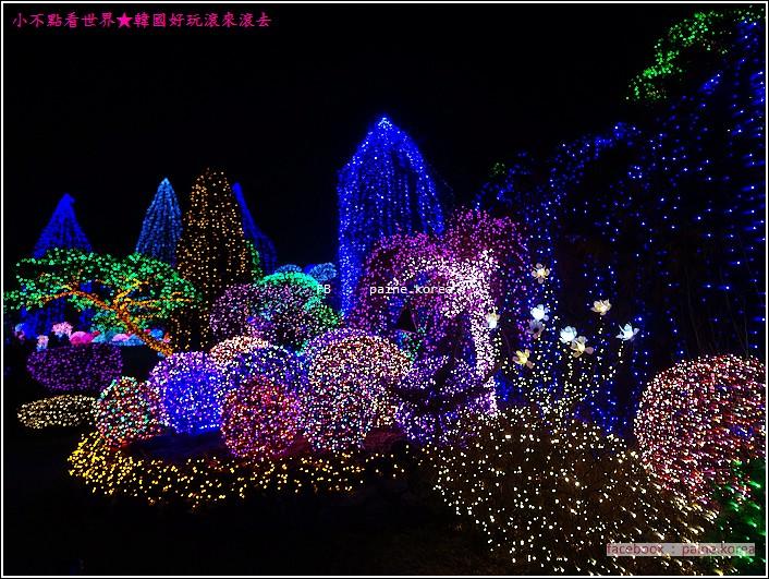 晨靜樹木園 五色星光庭園展 (43).JPG