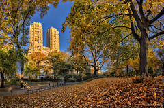 Central Park en Otono, New York (dleiva) Tags: newyorkcity autumn usa yellow horizontal fence outdoors photography leaf day steps tranquility sunny nopeople footpath domingo scenics leiva colorimage highangleview centralparkmanhattan dleiva parkmanmadespace