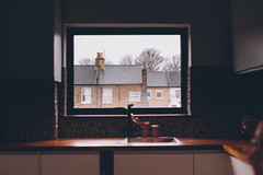Window (Tim Bow Photography) Tags: city light shadow england urban london window kitchen composition buildings design focus europe bokeh terrace creative documentary style document british windowview welsh rooves forestgate terracedhouses timboss81 timbowphotography