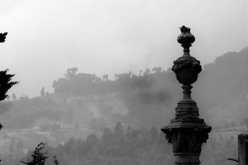 cementerio altense 1