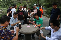 Playing cards in The People Park in Shanghai, China (mbphillips) Tags: china  shanghai  huangpu  puxi  peoplespark  canon450d sigma1835mmf18dchsm  mbphillips