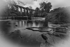 DSC_1199 (waynehodge940) Tags: viaduct merthyr cefn coed y cymmer river taff autumn fall wales heritage welsh