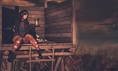 In the sunset... (Alexa.sorex) Tags: appliers accesory legalinsanity shinyshabby emotions hairmesh hair headmesh bodymesh belleza freya shoes venusshoes wowskins pinuptattoo catwa anna skin sexy sensual