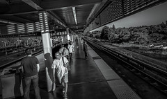 One Day In BART Station - Fremont, California (加州) (dlau Photography) Tags: bart station fremont california 加州 bartstation bart站 站 downtown 市中心 sanfrancisco 旧金山 舊金山 三藩市 driving parking 駕駛 停車場 驾驶 停车场 transportation 运输 運輸 travel tourist vacation visitor people lifestyle life style sightseeing 游览 遊覽 trip 旅遊 旅游 local 当地 當地 city 城市 urban tour scenery 风景 風景 weather 天氣 天气 monochrome 單色 black white blackandwhite 黑白 黑 白 simplysuperb soe