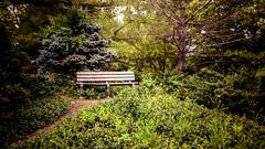 lake katherine. july 2016 (timp37) Tags: bench lake katherine illinois july 2016 summer palos heights