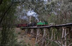 Double Gemmy (michaelgreenhill) Tags: pbr wrighttrestle victoria commissionersspecial 6a wrightforest forest australia trestle bridge trains bridge8 steam 14a puffingbilly cockatoo au