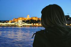 reminisce (marin.tomic) Tags: budapest hungary ungarn hungarian city urban blue nightfall bluehour danube donau lights travel nikon d90 europe skyline