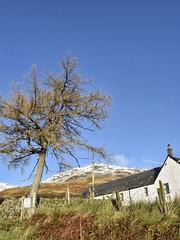 Inversnaid/ Aberfoyle (Anne Young2014) Tags: winter snowy trossachs scotland scotspirit inversnaid
