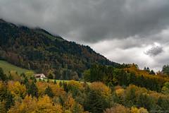 l'automne arrive... (alain.winterberger) Tags: broc gruyre automne arbre arbres fret couleur orange nuages nuage paysage nature montagne montagnes suisse switzerland schweiz svizerra sigma waadt tree trees pays d7100 nikon nikonpassion panorama
