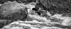 Shooting the Rapids (marksedgwick55) Tags: water splash paddle drama creative ireland sport blackandwhite monochrome speed panning motion action canoe kayak