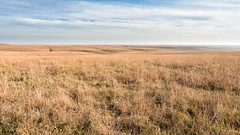 Tallgrass Prairie (JLDMphoto) Tags: nikon d7200 14mm tallgrass prairie nps nationalparks kansas reserve flinthills pasture native grass greatplains landscape nature cc creative commons exposure light sunshine hills sky clouds park