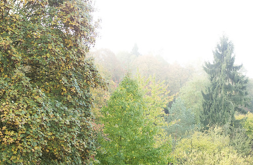 Welch schöner Herbstmorgen.